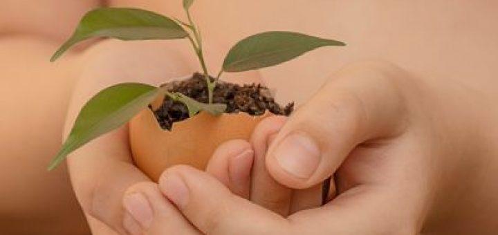 Comment-réduire-empreinte écologique-cahier-econotebk.jpg